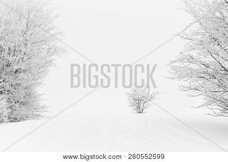 Snowy And Foggy Mountain