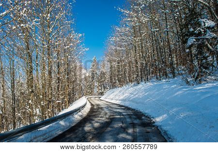 Uphill Road Landscape In Winter Through The Forest. Asphalt Road With Sideways Full Of Snow.