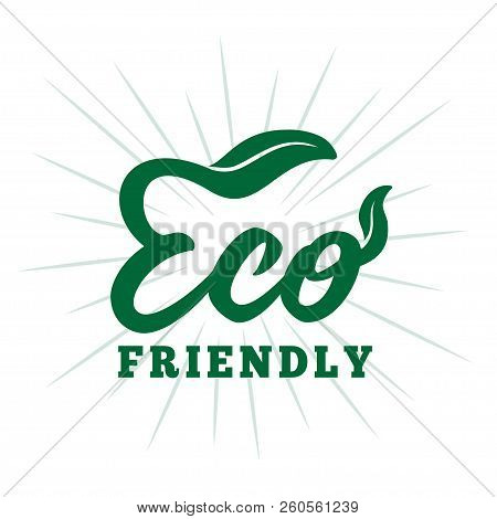 Eco Friendly Design Template. Vector And Illustration.