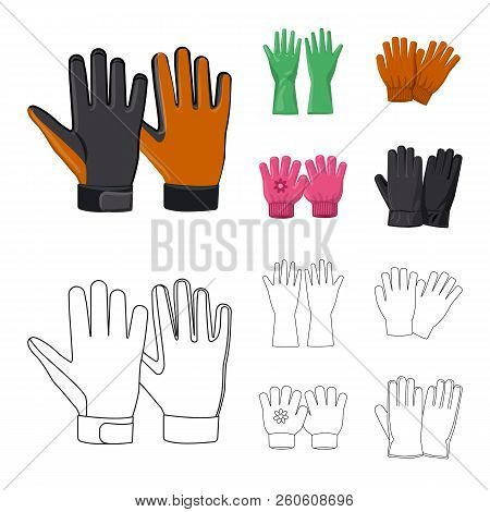 Vector Illustration Of Glove And Winter Logo. Set Of Glove And Equipment Vector Icon For Stock.