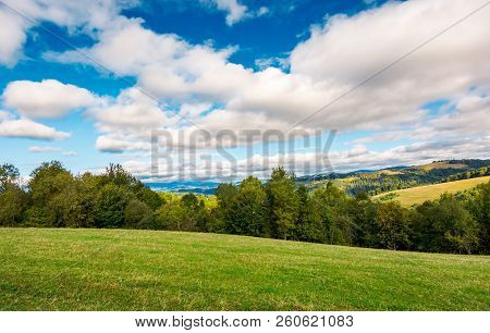 Beautiful Countryside In Early Autumn. Grassy Rolling Hills With Some Trees. Wonderful Cloudscape On