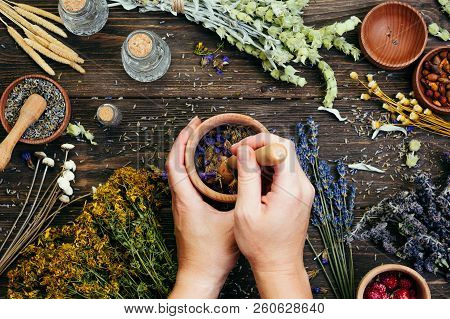 Preparation Of Medicinal Herbs, Alternative Medicine, Ayurveda, Dry Plants, Wooden Background