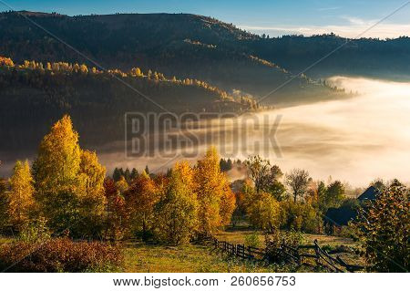 Beautiful Countryside In Autumn At Sunrise. Trees In Colorful Foliage. Fog In The Valley Above The V