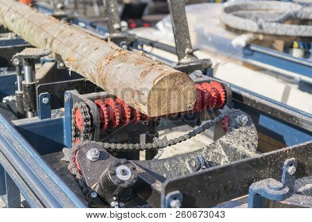 Sawmill. Process Of Machining Logs In Equipment Sawmill Machine Saw Saws The Tree Trunk On The Plank