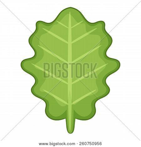 White Beam Leaf Icon. Cartoon Illustration Of White Beam Leaf Icon For Web