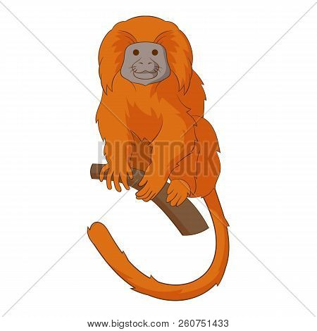Golden Lion Tamarin Icon. Cartoon Illustration Of Golden Lion Tamarin Icon For Web