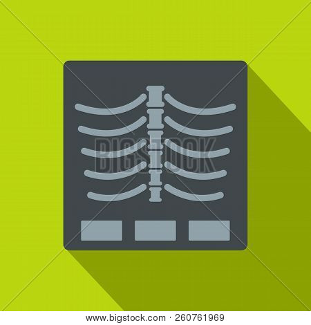 X Ray Photo Icon. Flat Illustration Of X Ray Photo Icon For Web