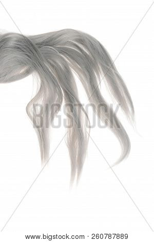 Piece Of Grey Weft Hair On A White Background