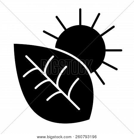Photosynthesis Solid Icon. Environment Vector Illustration Isolated On White. Leaf And Sun Glyph Sty