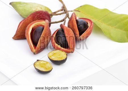 Thai Chestnut Or Chinese Chestnut And Seven Sisters' Fruit On White