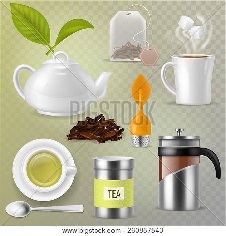 Tea Vector Drink Herbal Beverage With Dry Leaves In Tea-cup And Teapot Or French Presson Teatime Ill