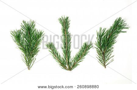 Christmas Composition. Christmas Tree Branch, Pine Cones, Fir Branches On White Background. Flat Lay