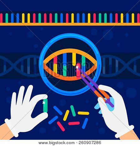 genome sequencing concept. Nanotechnology and biochemistry laboratory. The hands of a scientist working with a dna helix, genome or gene structure. Human genome project. Flat style vector illustration. poster