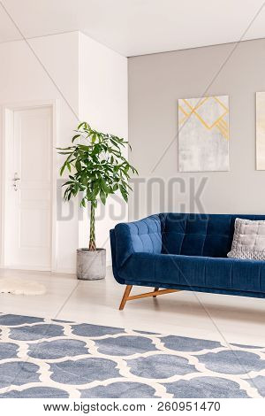 A View At An Inner Door Through A Bright And Minimal Lounge Interior With A Comfortable Dark Blue Se