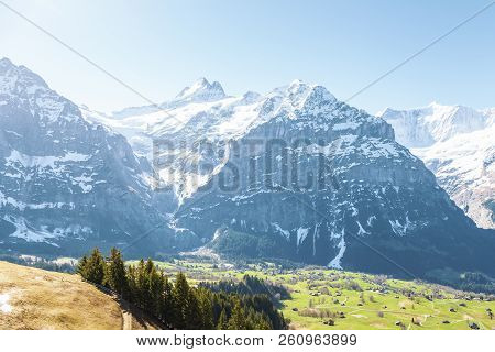 Houses In Small Village On Mountain Alps At Grindelwald First Peak Switzerland Europe