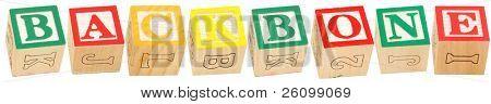 Colorful alphabet blocks spelling the word BACKBONE