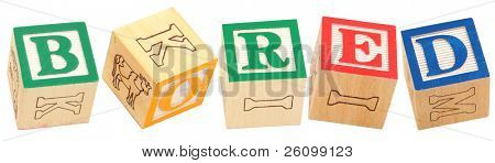 Colorful alphabet blocks spelling the word BORED