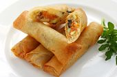 Fried Chinese Traditional Spring rolls poster