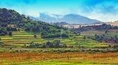 Landscape of a mountain hill at daytime. Landscape of a mountain hill at daytime. Mountain landscape in summer with cumulus clouds. Mountain meadow with fresh green grass. View at a mountain valley in summer. View at a mountain valley in summer. poster