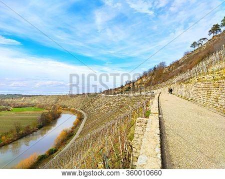 Tourist Sight Hessigheimer Felsengaerten Near River Neackar
