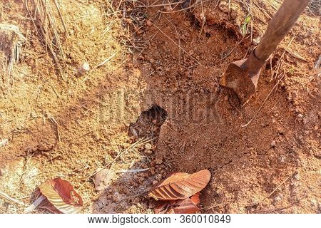 A Crabs Hole In Ground. Earth Crab Hunting
