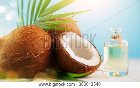 Coconut palm oil in a bottle with coconuts and green palm tree leaf on a blue and  white background. Beauty treatments. Coco nut closeup. Healthy Food, skin care concept. Vegan food