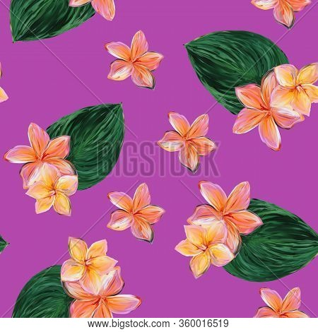 Frangipani Plumeria Tropical Flowers. Seamless Pink Pattern Background. Tropical Floral Summer Seaml
