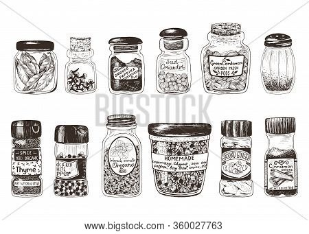 Spices In Jars, Hand Drawn Set With Thyme, Paprika, Cinnamon, Ginger, Coriander, Cardamom, Pepper, O
