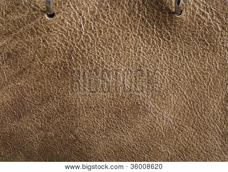 Pinto Brown Leather