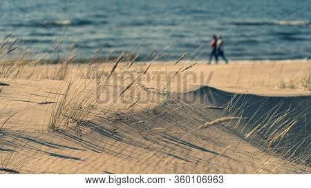 The Couple Walks Along The Shore Of The Baltic Sea On The Background Of Sand Dunes In Spring. Latvia