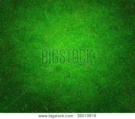 Golf Green Background