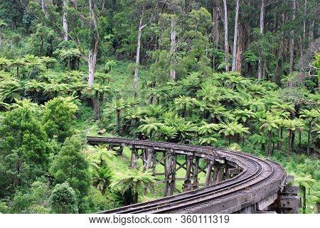 Puffing Billy Trestle Bridge In  The Dandenongs