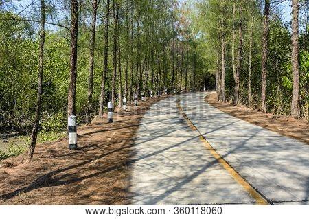 Empty Coastal Road Winds Through Mangroves On Ko Yao Noi Island In Phang-nga Bay Near Phuket, Thaila
