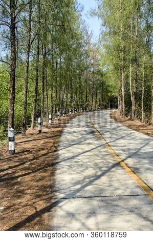 Covid-19 Lockdown. Empty Coastal Road Winds Through Mangroves On Ko Yao Noi Island In Phang-nga Bay