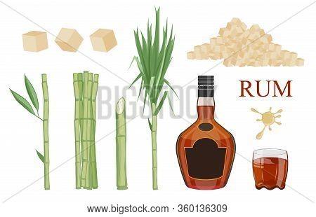 Set Of Sugarcane And Field. Sugarcane Logo. Cane Leaf, Sugarcane Juice. Sugar Cane, Sweet Plant, Nat