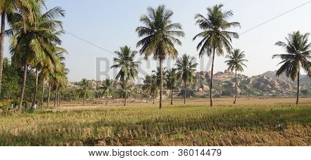 scenery around Hampi a city located in Karnataka South West India at evening time poster