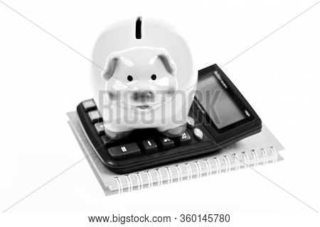 Accounting Business. Piggy Bank Symbol Of Money Savings. Services For Accounting. Accounting Softwar