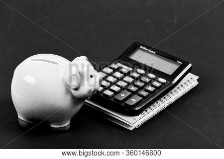 Piggy Bank Money Savings. Banking And Accounting. Financial Help Services. Financial Support Consult