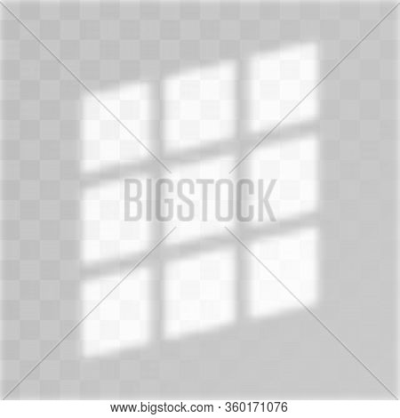 Shadow Background Overlays. Realistic Shadow. Transparent Shadow Of Geometry. Vector Mock Up.
