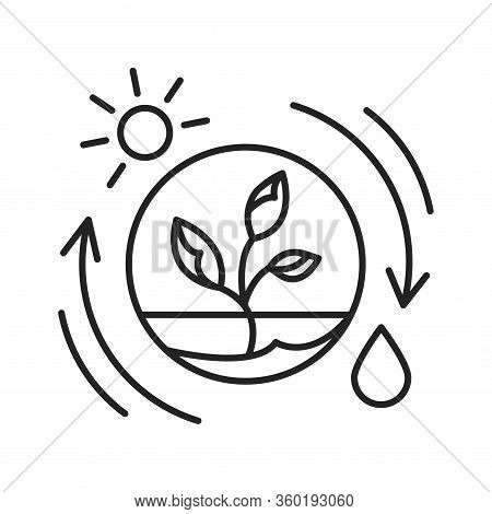 Competent Photosynthesis Black Line Icon. The Process By Which Green Plants And Certain Other Organi
