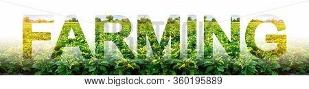 Word Farming On Background Of Field Plantation. Agroindustry And Agronomy. Growing Food Vegetables,