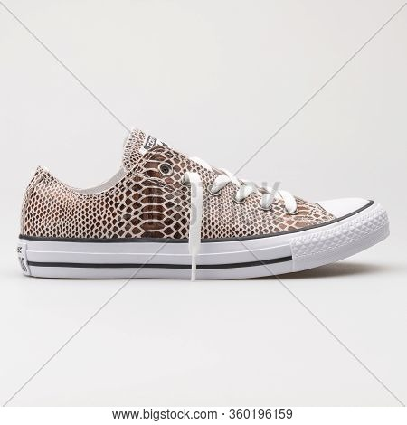 Vienna, Austria - August 14, 2017: Converse Chuck Taylor All Star Ox Brown, Black And White Sneaker
