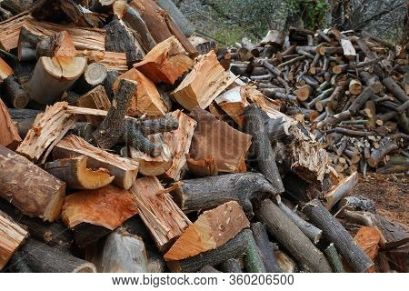 Pile Of Chopped Wood. Firewood Woodpile In A Farm.