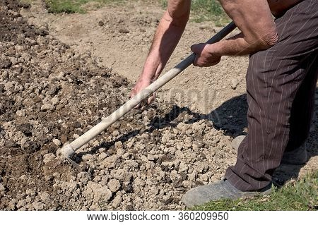 A Man Cultivates Land With A Hoe. Holds A Hoe.