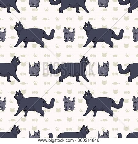 Cute Cartoon British Shorthair Cat And Kitten Seamless Vector Pattern. Pedigree Kitty Breed Domestic