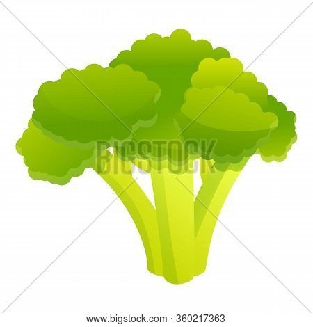 Broccoli Cabbage Icon. Cartoon Of Broccoli Cabbage Vector Icon For Web Design Isolated On White Back