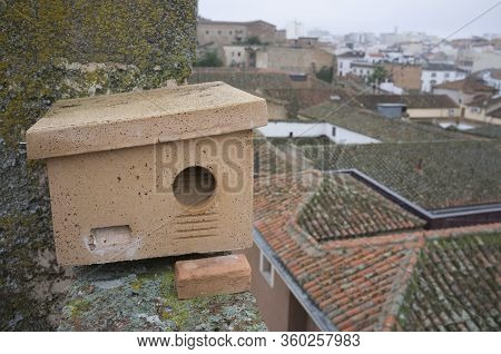Nest Box At Monumental Building Roof In Caceres, Spain. These Shelter Are Placed In Order To Improve
