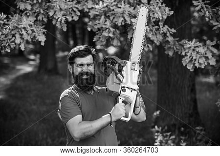 The Lumberjack Working In A Forest. Professional Lumberjack Holding Chainsaw In The Forest