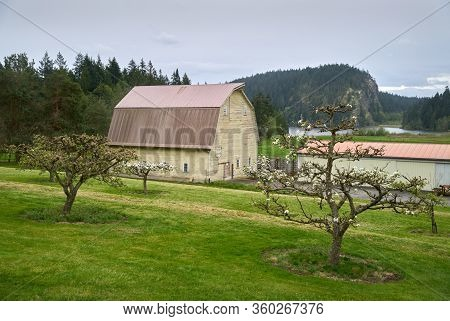Pacific Northwest Barn. A Weathered Barn In The Pacific Northwest. United States.