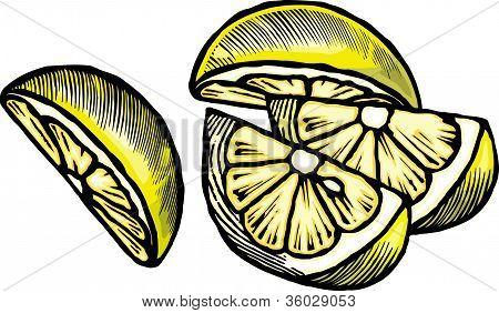 Drawing Of Lemon Wedges